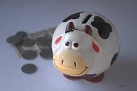 oszczędności z IKM w skarbonce